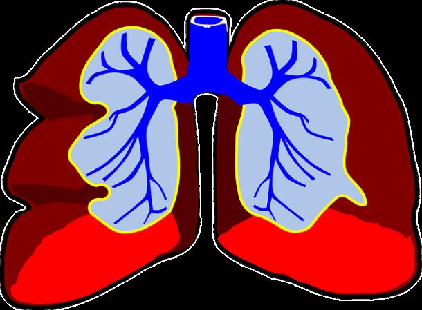 Nieleczona obturacyjna choroba płuc może skrócić życie o 15 lat